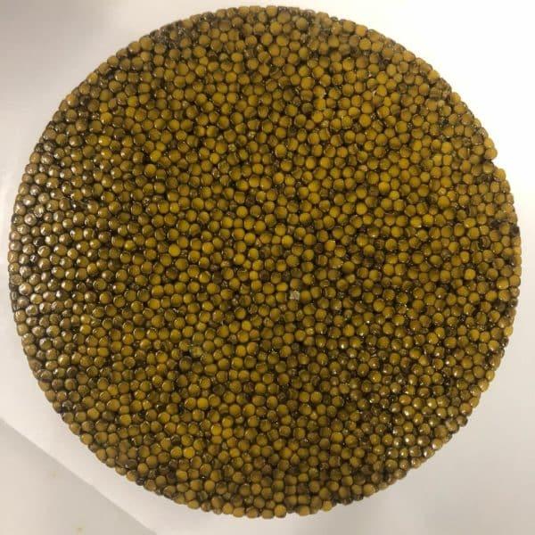 caviar-Royal-in-dubai-mastertin