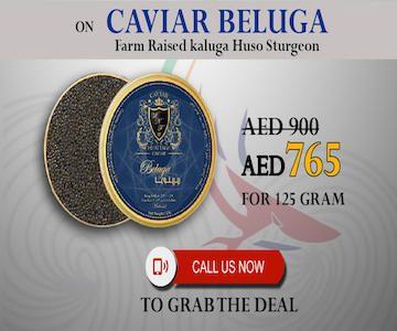 beluga caviar offer