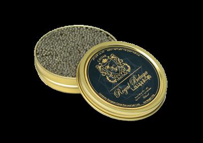 Caviar Royal Beluga Huso Huso in an opened tin by caviar heritage best online caviar in Dubai Khaviar